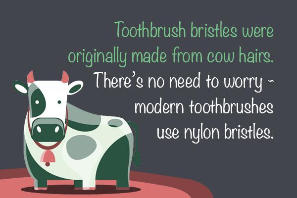 15104 Blog Image - Toothbrush2