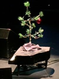 Tree on a piano